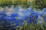 Iris and Cloud Reflections