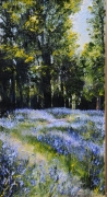 Oaks and bluebells,.