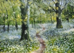 Wild Garlic Path, Ross Island..