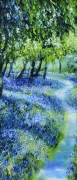 Bluebell Path 2 .,